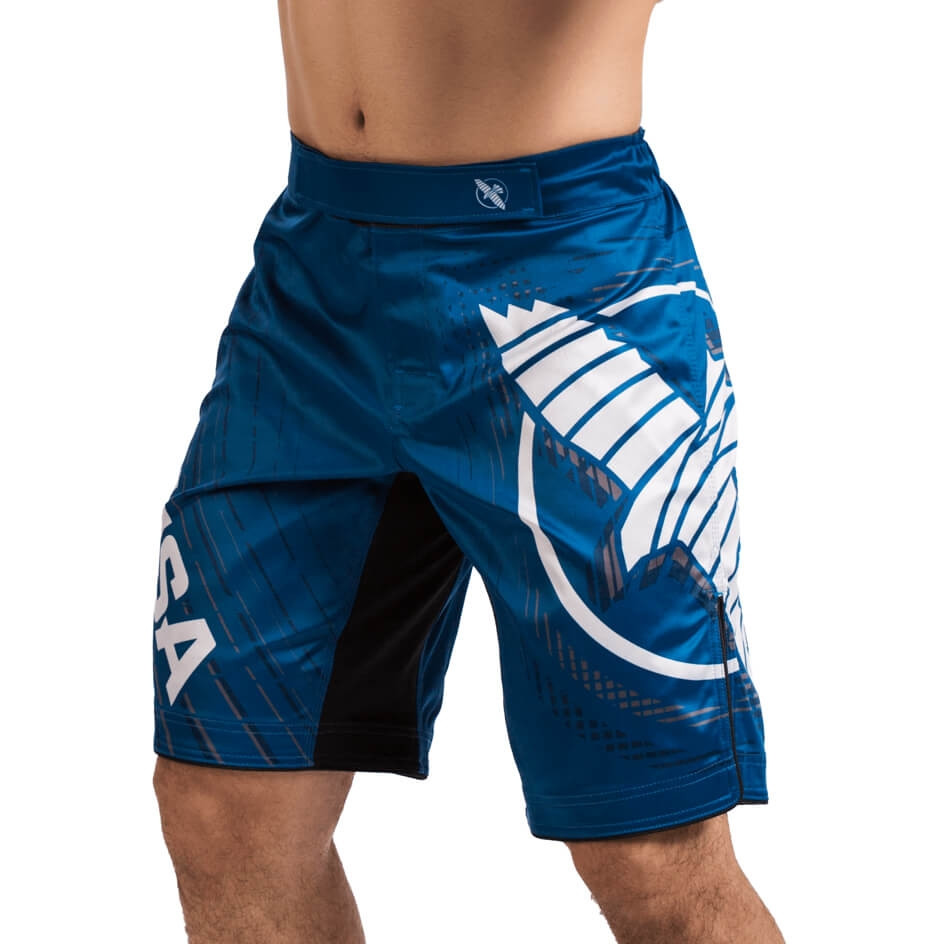 Hayabusa Chikara 4 Fight Shorts - Blue
