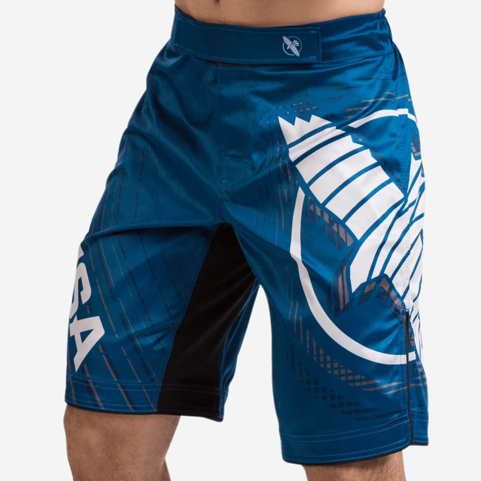 Hayabusa Chikara 4 Fight Shorts - Blue